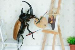 Beetle-ardo da Vinci