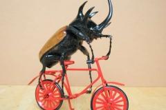 Bike Beetle