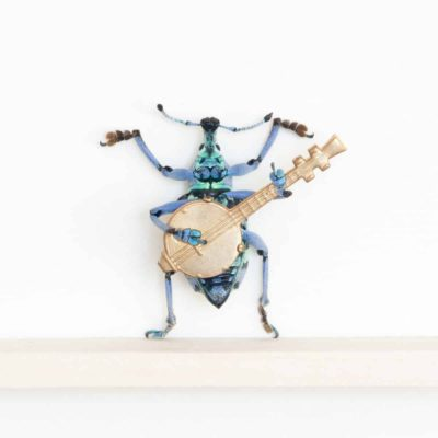 weevil playing banjo