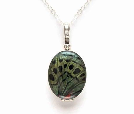 charles darwin butterfly wing jewelry