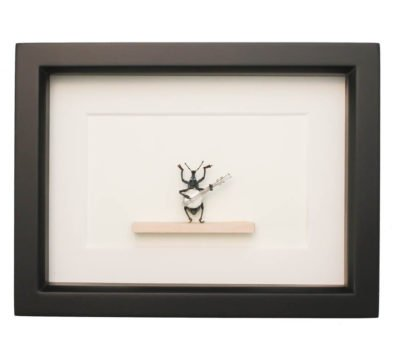 Framed Banjo Beetle