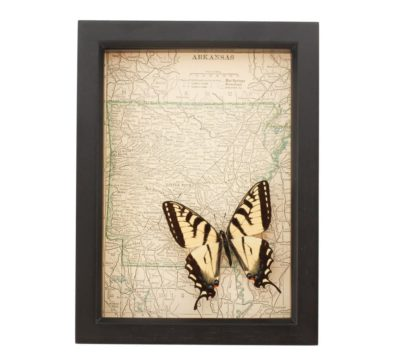 Framed Arkansas Map Butterfly