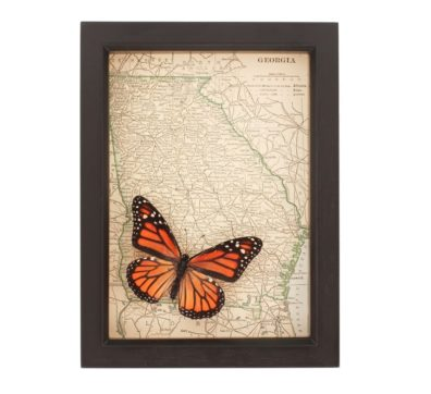 Framed Map Georgia Butterfly