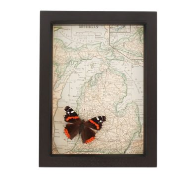 Framed Map Michigan Butterfly