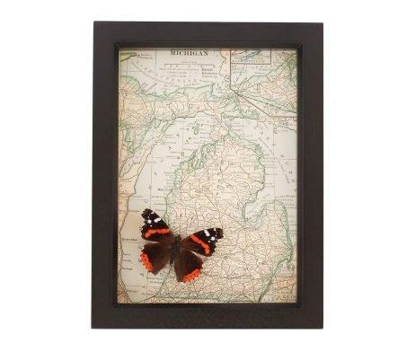 framed map michigan