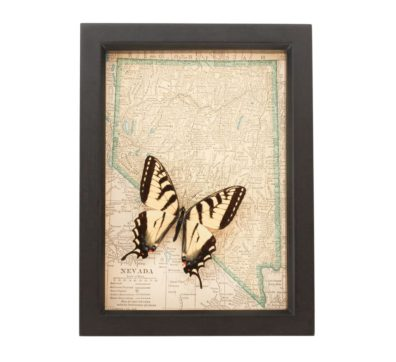 Framed Map Nevada with Butterfly