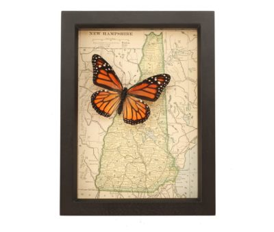 framed map of new hampshire
