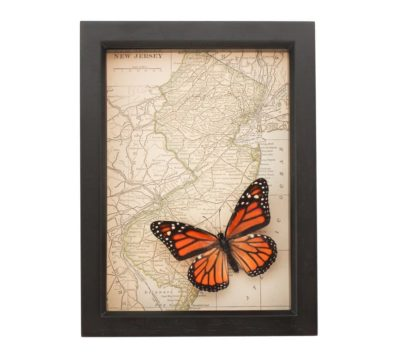 Framed New Jersey Map with butterfly