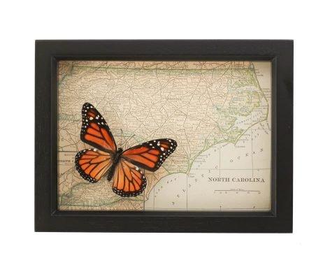 framed north carolina map