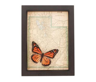 monarch butterfly art map
