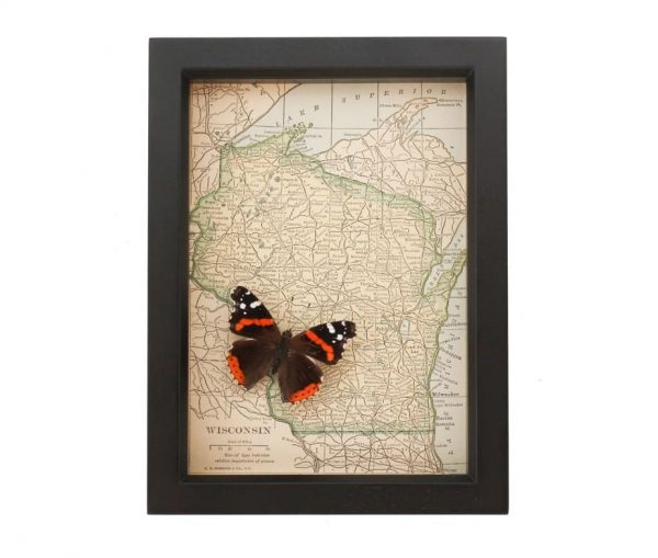 framed wisconsin map admiral