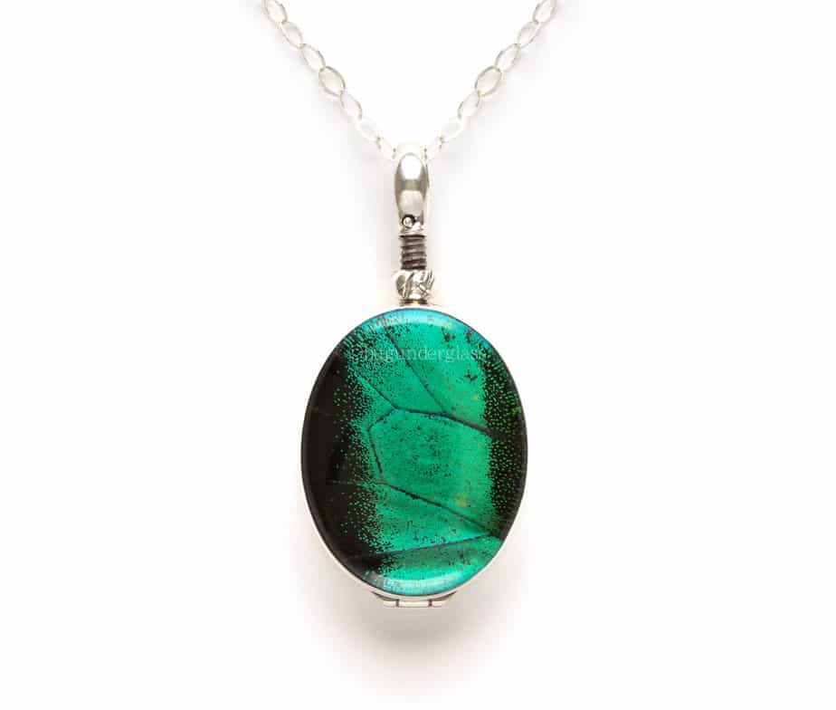 insect wing pendant