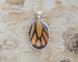 monarch butterfly wing jewelry
