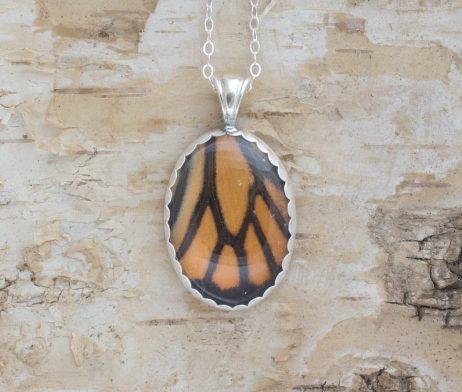 monarch butterfly wing jewelry