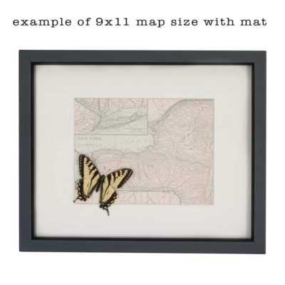 map of new york with butterfly