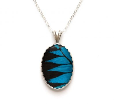 Blue Mountain Butterfly Wing Necklace