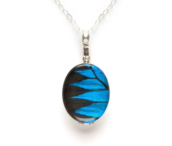 papilio ulysses butterfly necklace