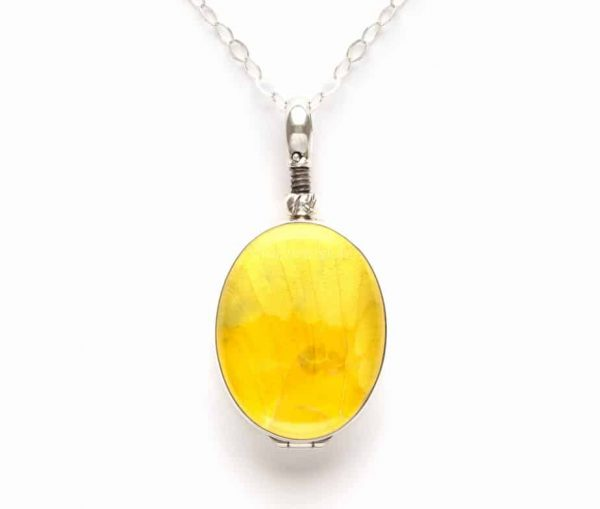 yellow butterfly wing jewelry