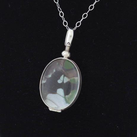 graphium weiskei butterfly pendant