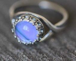 graphium weiskei ring