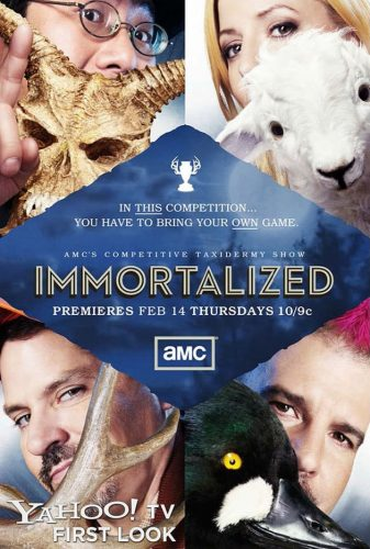 immortalized-amc