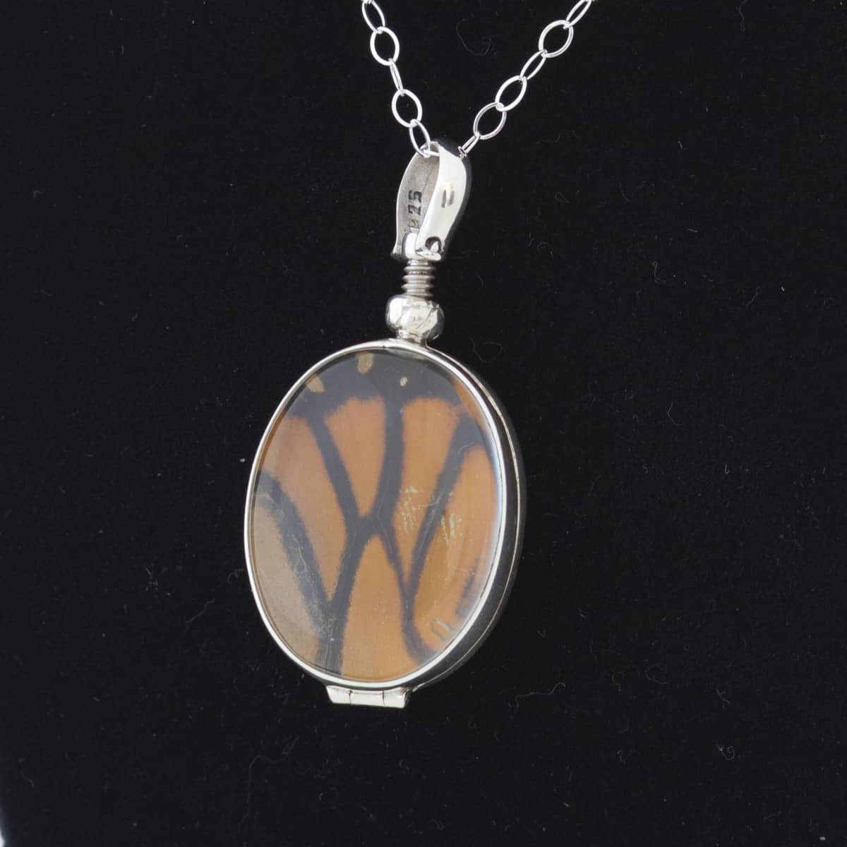 real butterfly wing jewelry monarch