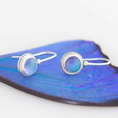 blue morpho real butterfly wing earrings