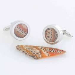 real butterfly wing cufflinks
