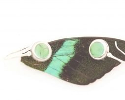 peacock swallowtail real butterfly wing earrings
