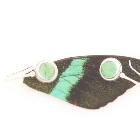 peacock swallowtail real butterfly wing earrings