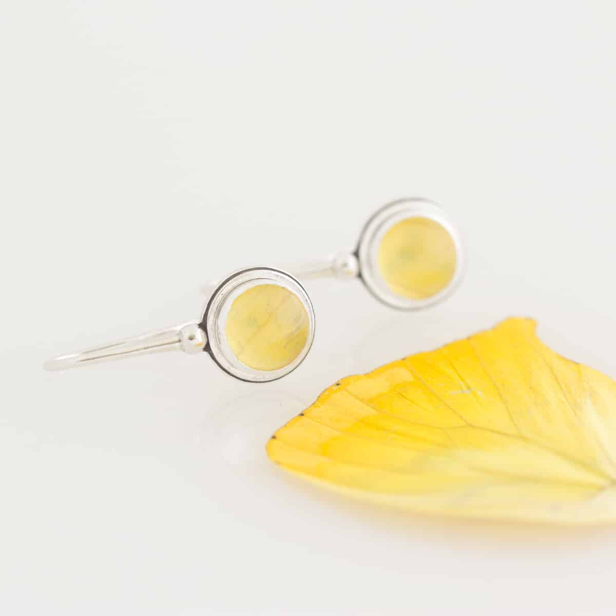 real butterfly wing earrings sulphur