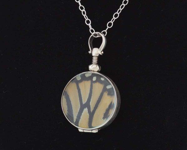monarch butterfly real butterfly wing jewelry