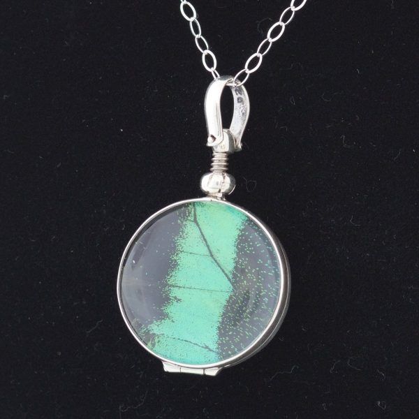 peacock swallowtail real butterfly wing necklace