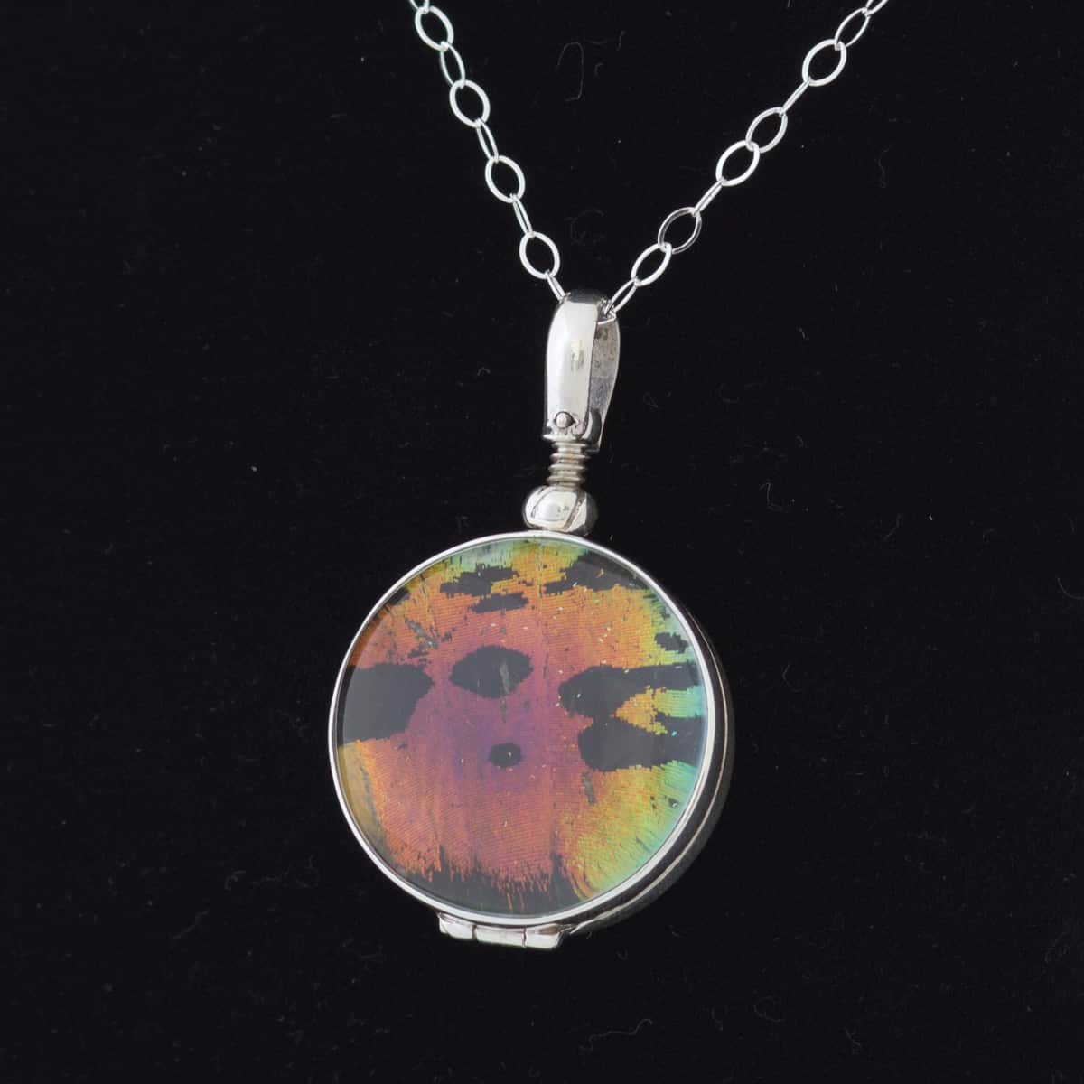 madagascan sunset moth necklace