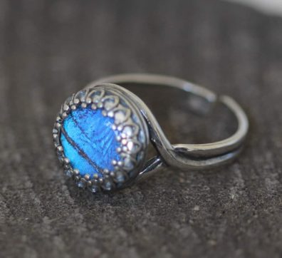 real butterfly wing ring blue morpho
