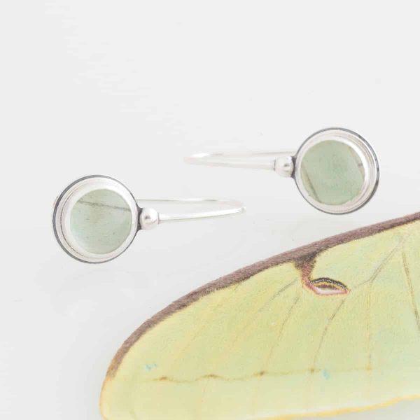 real luna moth earrings