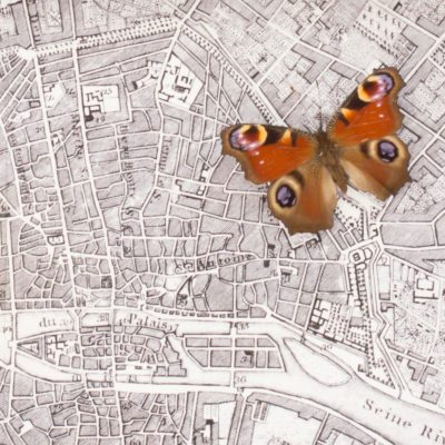 map of paris with butterfly
