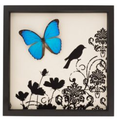 blue morpho butterfly damask