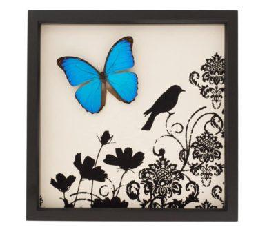 blue morpho butterfly damask