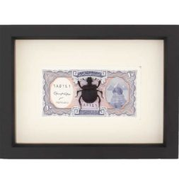 real scarab beetle money