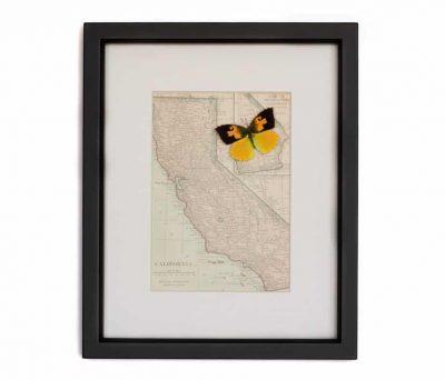 vintage framed california map