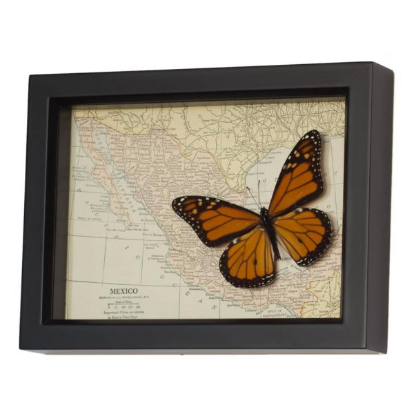 framed map of mexico