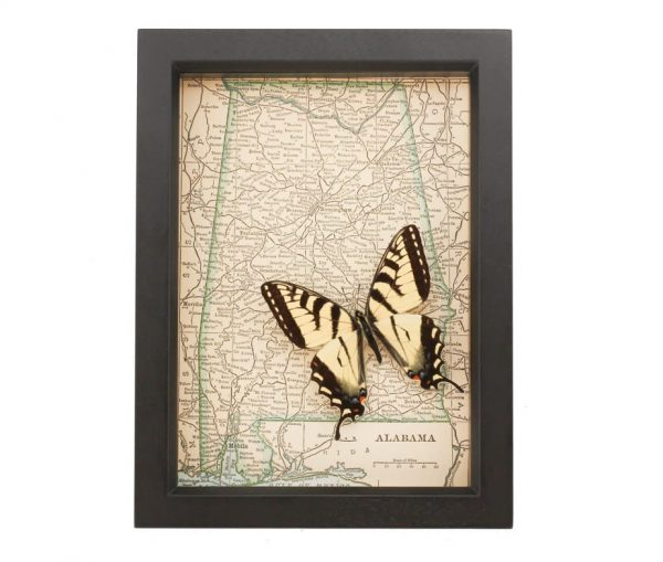 framed map of alabama