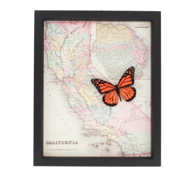 Framed Map California with Monarch Butterfly