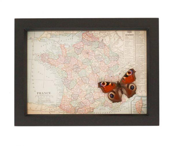 framed map of France