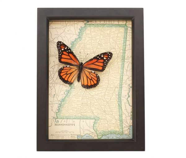 framed map of Mississippi with monarch
