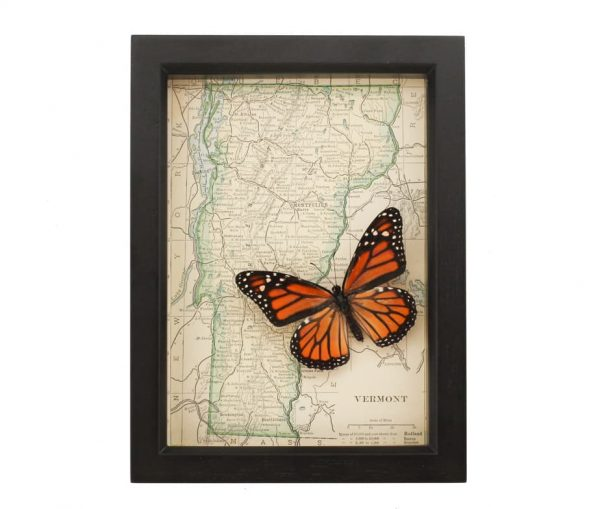 framed map of vermont with monarch