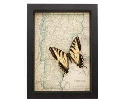 framed map of vermont