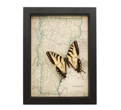 Framed Map Vermont with Butterfly