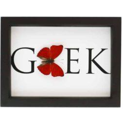framed red butterfly